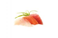 SASHIMI / TATAKI
